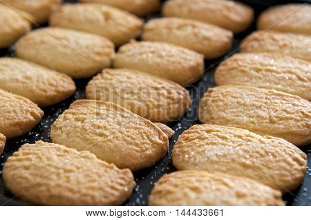 Closeup of butter cookies on baking tray shot at selective focus.
