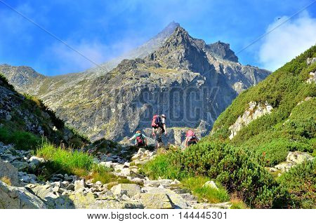 Tourists in a beautiful mountain valley. Tourists climbing the mountain peaks in High Tatra Slovakia.