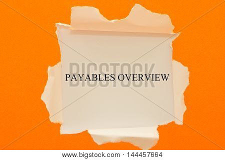 Payables overview written under torn paper .