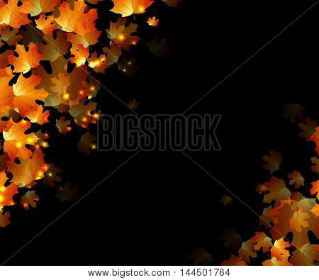 the concept autumn with orange leaves on the dark background