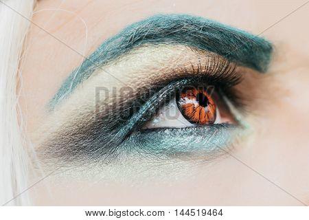 Male Eye With Orange Lens