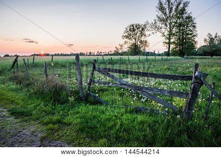 Wooden gate on pasturage in Mazowsze region in Poland