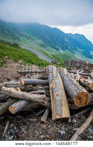 logs next to Transfagarasan Road in Balea Lake area in Romania