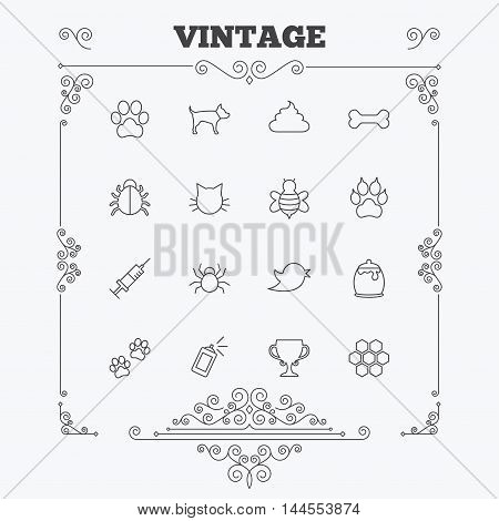 Pets and Insects icons. Dog paw. Cat paw with clutches. Bone, feces excrement and vaccination. Honey, bee and honey comb. Vintage ornament patterns. Decoration design elements. Vector
