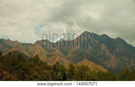 Hills on the coast of Flores Island in Indonesia