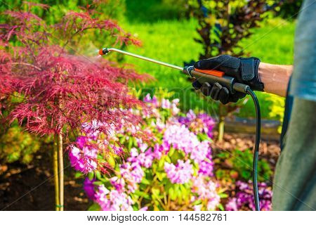 Pest Control in the Garden. Gardener Spraying Garden Flowers.