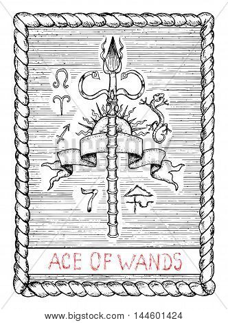 Ace of wands. The minor arcana tarot card, vintage hand drawn engraved illustration with mystic symbols. Stick with banner, sun and zodiac signs