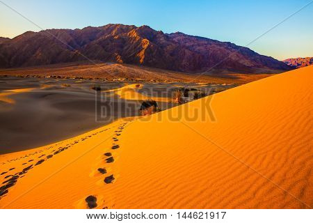 Mesquite Flat Sand Dunes. Bizarre twists of orange sand dunes. On the slopes of the dunes can be seen deep footprints of humans and animals