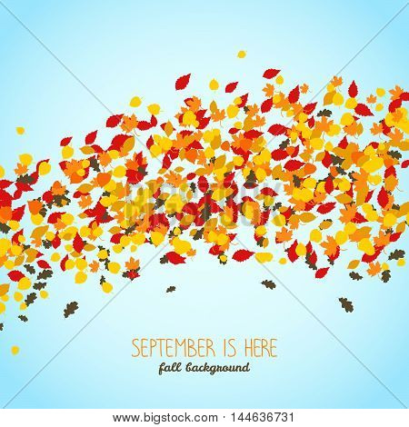 September is Here. Wavy background made of falling leaves. Warm fall background with copy space. Text frame. Colorful foliage card in warm colors.