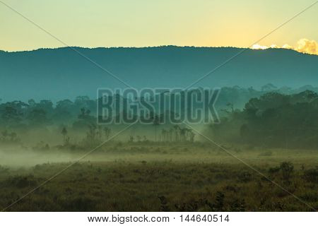 Mountain and mist in the morning at Khao Yai national park (a unesco world heritage site) Thailand.