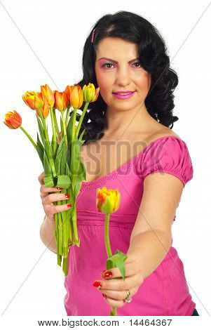Beauty Woman Offering A Fresh Tulip