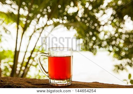 Glass cup of tea with cinnamon on the river bank Madu Ganga - Sri Lanka