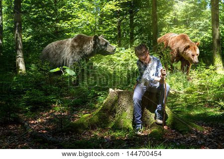 The abstract image of a boy in the woods with the bears