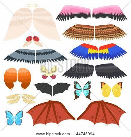 Wings isolated collection animal feather and wings isolated pinion. Wings isolated bird feather animal freedom flight and vector wings isolated peace design flying different elements