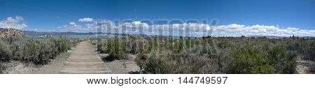 Panoramic view over landscape and vegetation at Mono Lake, California
