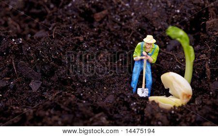 poster of Miniature gardener  working