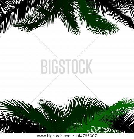 Floral background. Summer leaves flourish border. Plam leaf frame pattern