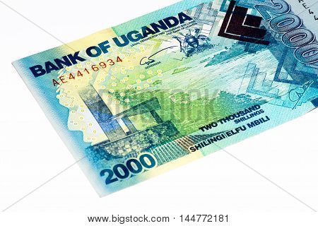 2000 Ugandan shillings bank note. Ugandan shilling is the national currency of Uganda
