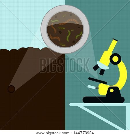 Earthworm, Laboratory And Field