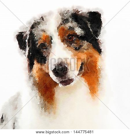 Digital painted cute dog with watercolor effect and brown and white hair.
