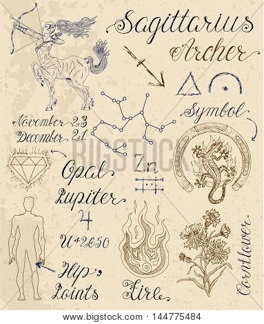 Collection of hand drawn symbols for astrological zodiac sign Sagittarius or Archer. Line art vector illustration of engraved horoscope set. Doodle drawing and sketch with calligraphic lettering