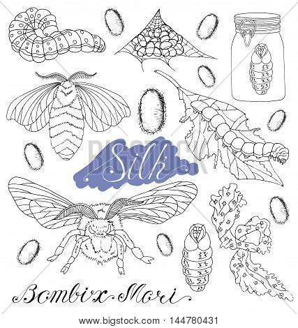 Hand drawn set with silk moth, worms, larva, silk, cocoons isolated. Doodle line art illustration and graphic sketch, black and white vector with icons, bombix mori collection