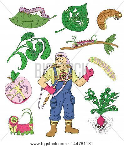 Colorful set with isolated garden insects and exterminator. Pest control and garden concept. Larva and worms, handsome man with professional equipment. Colorful doodle and vector icons