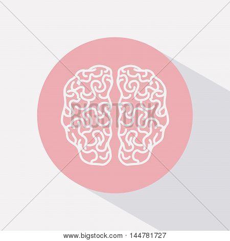 brain human organ isolated icon vector illustration design