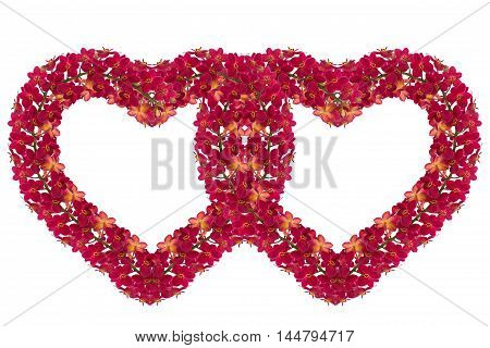 Heart of red orchids on white background.
