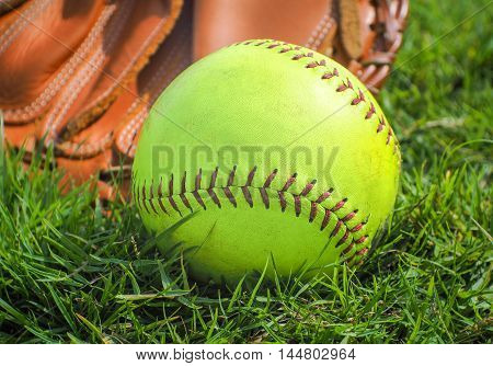 Green light baseball (Balls for training) in glove on a baseball field, Selective focus and close up image