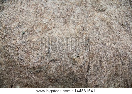 Texture of wooly felt material background for your project