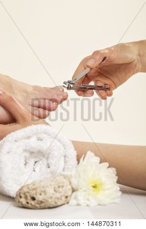 Close up View Of A Beautician's Hand Cutting Client's Toenails