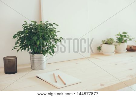 Hipster artist's work space, plants and canvas on table in white interior