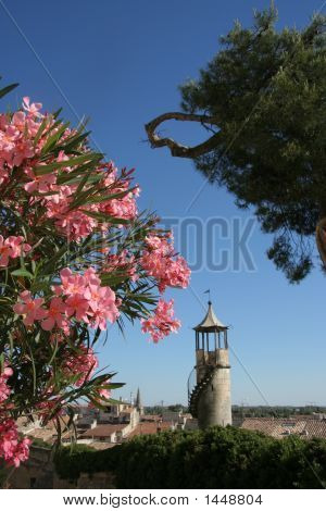 Beaucaire Postcard