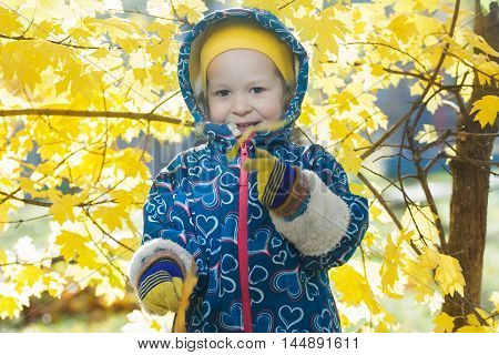 Smiling little girl outdoor portrait at bright yellow autumn shrubbery leaves background