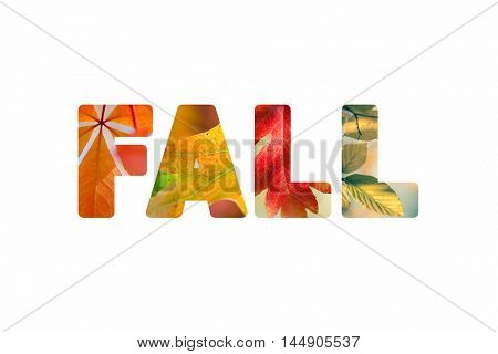 Word Fall with different colorful nature leaves photos inside the letters, isolated on white