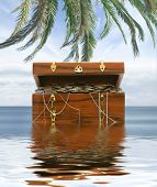Treasure chest isolated on white background poster