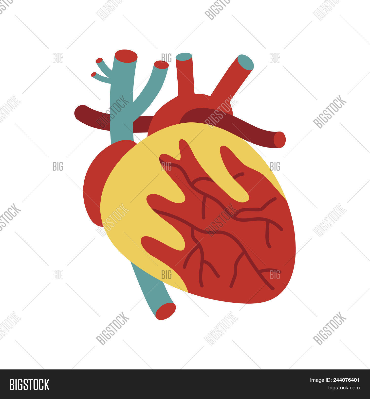 Human Heart Icon Image & Photo (Free Trial) | Bigstock