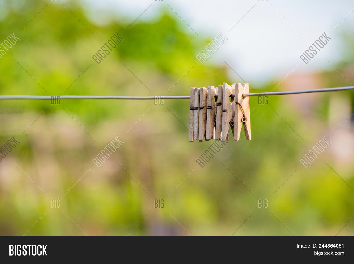 Wooden Clothespins Image Photo Free Trial Bigstock