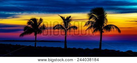 The Shape Of Things To Come: Sunrise Against Three Silhouetted Palm Trees On A Sandy Beach At Sunris