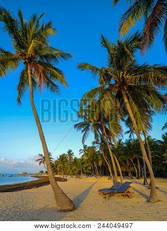Morning Breeze: Golden Light Illuminates A Tranquil Tropical Sandy Beach With Lounge Chairs Laying U