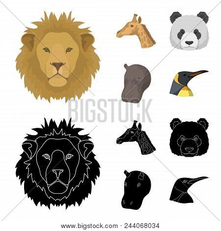 Panda, Giraffe, Hippopotamus, Penguin, Realistic Animals Set Collection Icons In Cartoon, Black Styl