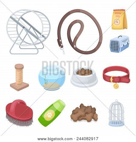 Pet Shop Cartoon Icons In Set Collection For Design.the Goods For Animals Vector Symbol Stock  Illus