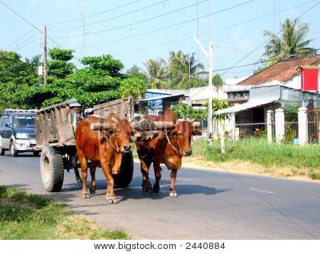 Slowing Traffic