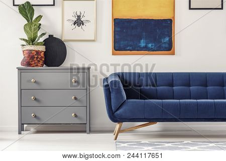 Fresh Green Plant Placed On Grey Cupboard Standing Next To Navy Blue Sofa In Bright Living Room Inte