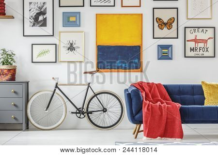 Bright Red Blanket On A Navy Blue Settee Standing Next To A Vintage Bicycle Against White Wall With