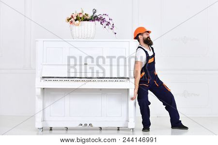 Man With Beard Worker In Helmet And Overalls Pushes, Efforts To Move Piano, White Background. Courie