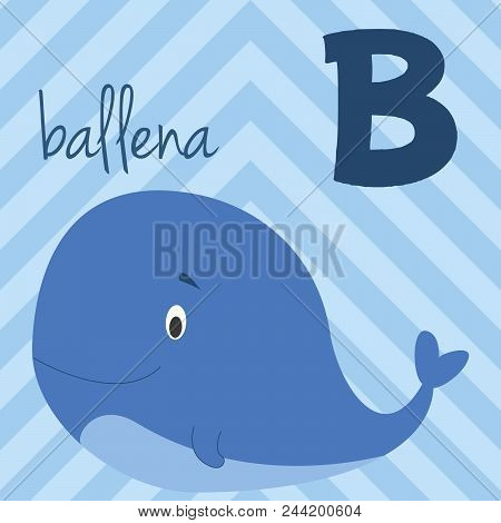 Cute Cartoon Zoo Illustrated Alphabet With Funny Animals. Spanish Alphabet:  B For Ballena. Learn To
