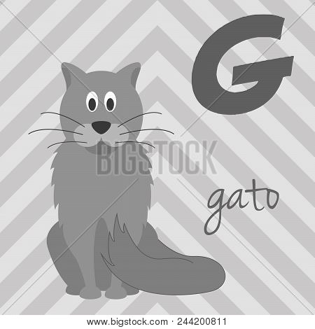 Cute Cartoon Zoo Illustrated Alphabet With Funny Animals. Spanish Alphabet: G For Gato. Learn To Rea