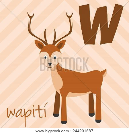 Cute Cartoon Zoo Illustrated Alphabet With Funny Animals. Spanish Alphabet: W For Wapiti. Learn To R